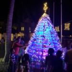 CHRISTMASS PRIDE